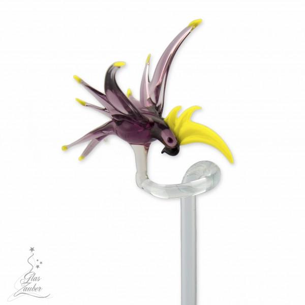 """Orchideenstab aus Glas """"Kakadu"""""""